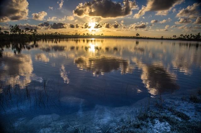 pine_glades_lake_everglades